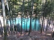 翠竹、卵石、小溪羊肠道、残雪、红丝带——莫干山国家登山健身踏步道图集一:踏步道与路边小景